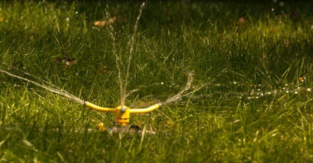 Calgary Lawn Watering Tips