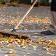 Fall clean-up! Do it Before the Snow Comes! - Five Star Landscaping - Fall Clean Up Calgary