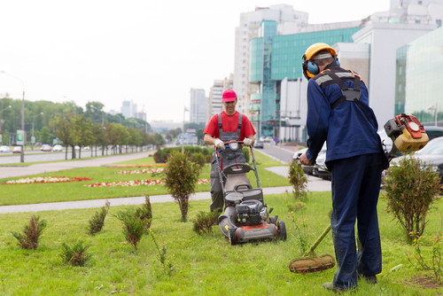 Why You Should Consider Retaining a Landscaping Team for your Business - Five-Star Landscaping - Landscaping Team Calgary