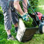Have a Professional Team Keep your Lawn Healthy while You're on Vacation - Five Star Landscaping - Lawn Maintenance Calgary