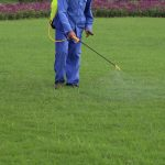 Avoiding Herbicides Responsibly - Fivestar Landscaping - Landscaping Experts Calgary