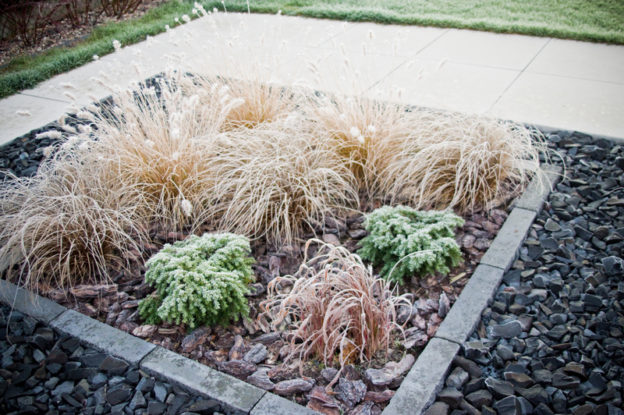 Fun Landscaping Ideas for the Holidays - Five Star Landscaping - Landscaping Experts Calgary