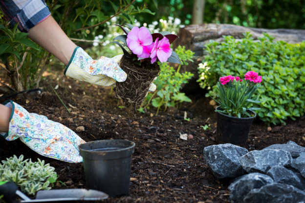 Low-Maintenance Landscaping Ideas - Five Star Landscaping - Landscaping Experts Calgary